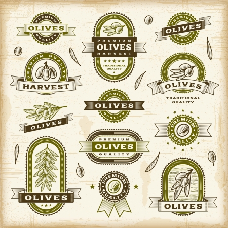 xilografia: Vintage etiquetas de oliva establecido Vectores