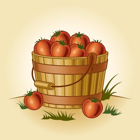 bushel: Retro bucket of tomatoes