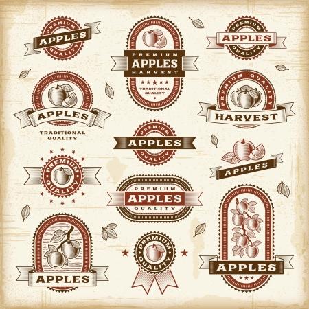 woodcut: Vintage apple labels set Illustration