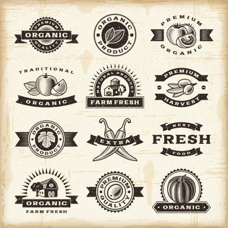 woodcut: Vintage organic harvest stamps set Illustration