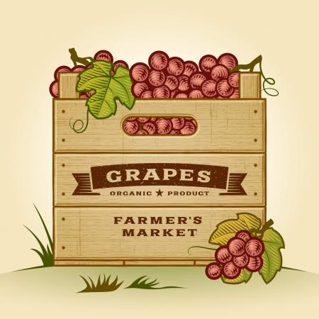 crates: Retro crate of grapes Illustration