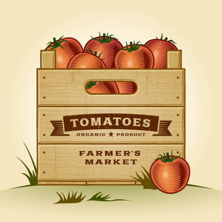 summer vegetable: Retro crate of tomatoes Illustration