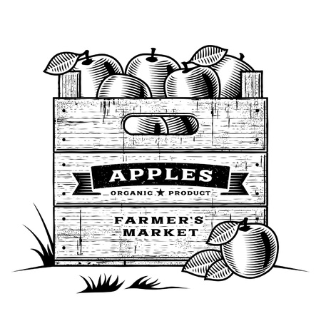 orchard fruit: Retro crate of apples black and white Illustration