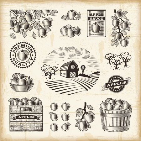 Vintage apple harvest set Illustration