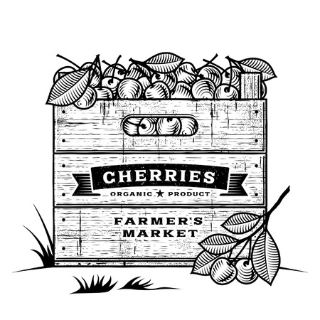 orchard fruit: Retro crate of cherries black and white Illustration