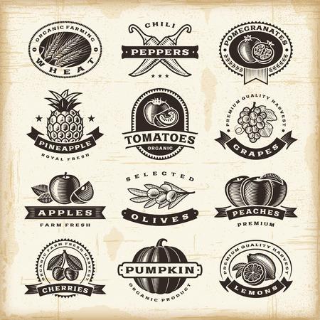 xilografia: Frutas y verduras Vintage etiquetas establecidas