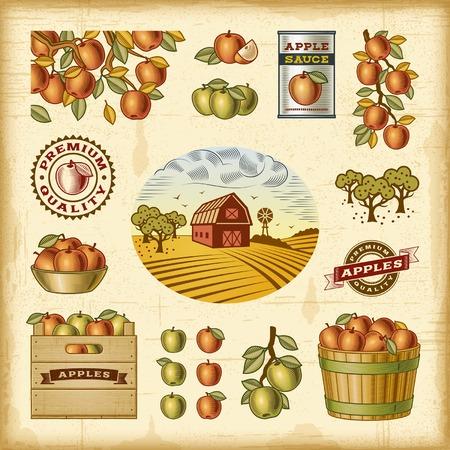 Vintage ensemble coloré de récolte des pommes