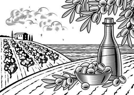 Olive harvest landscape black and white Vector