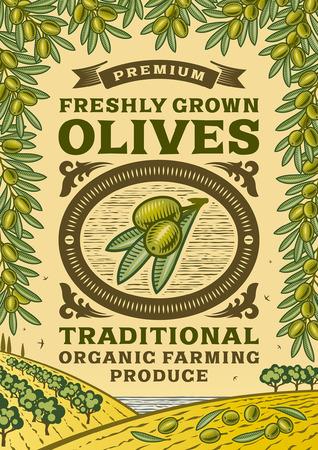 autumn leaf frame: Retro olives poster Illustration