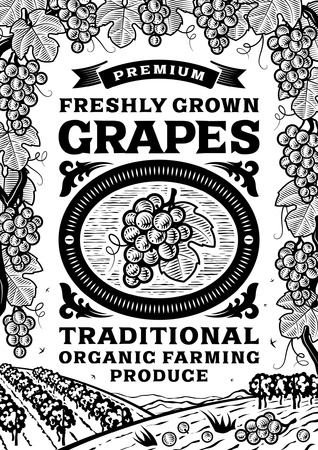 harvest: Retro grapes poster black and white