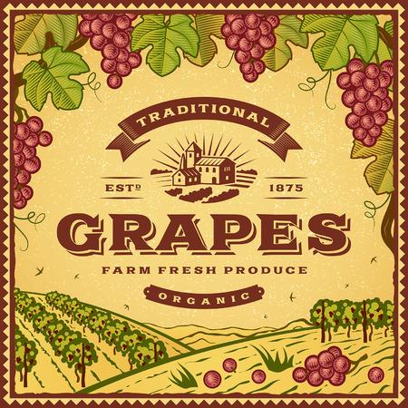 tuscany vineyard: Vintage grapes label