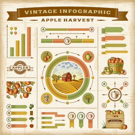 buildings vector: Vintage apple harvest infographic set