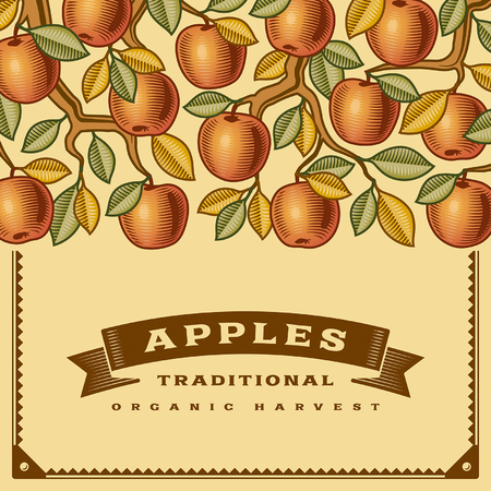 Retro apple harvest card Illustration