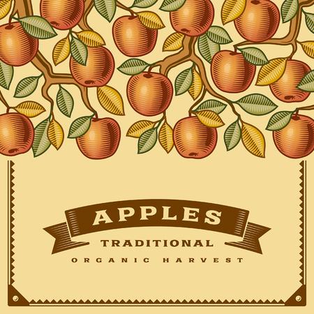 manzana: Tarjeta de cosecha de manzana Retro