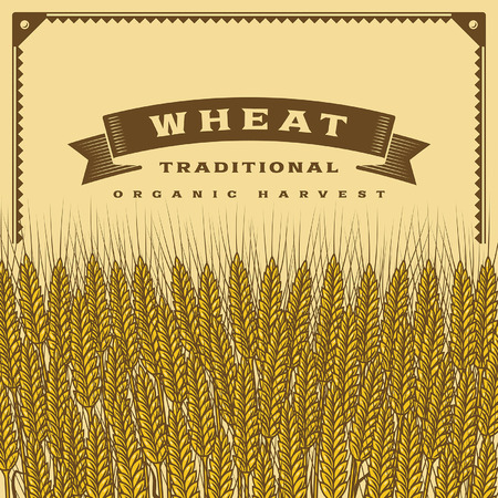 wheat harvest: Retro wheat harvest card Illustration