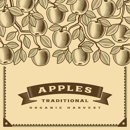 apple orchard: Retro apple harvest card brown