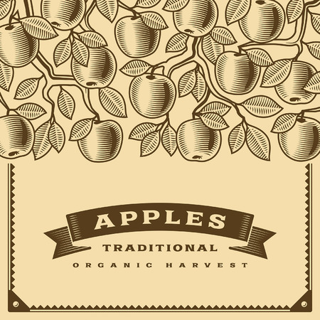 arboles frutales: Tarjeta de cosecha de manzana retro marrón