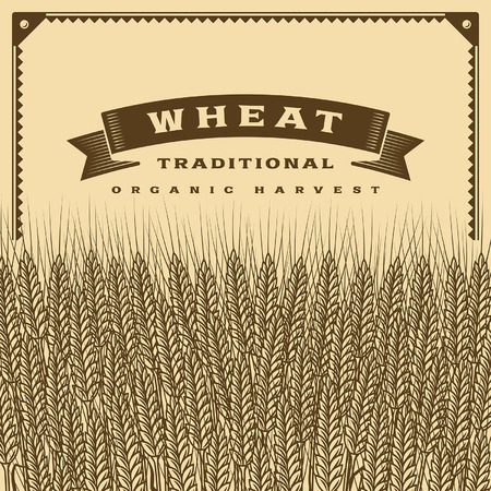 fall harvest: Retro wheat harvest card brown Illustration