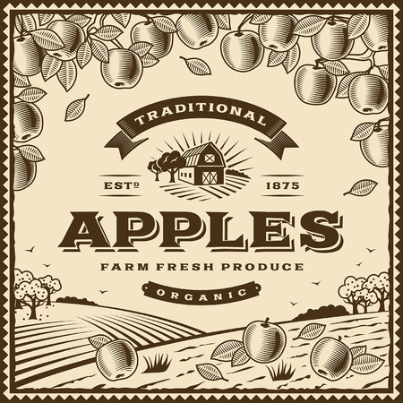 orchard fruit: Vintage brown apples label