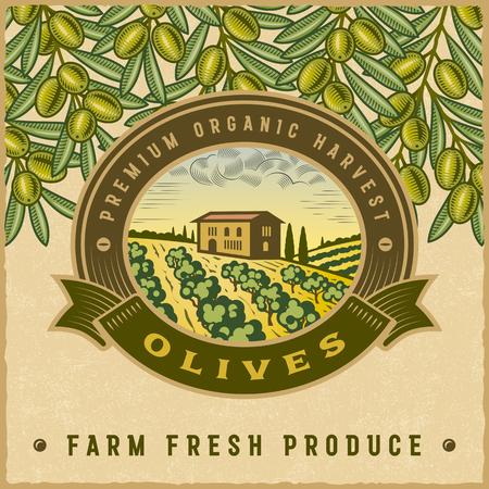 Étiquette vintage coloré de récolte des olives
