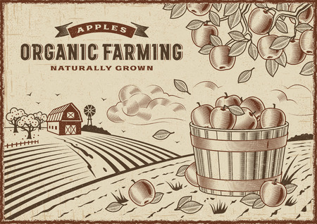 Apple Organic Farming Landscape Illustration