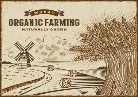 bales: Wheat Organic Farming Landscape