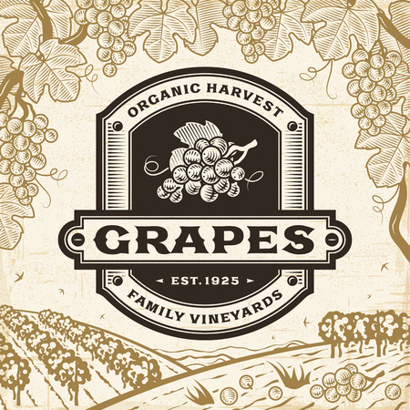 Retro grapes label on harvest landscape 版權商用圖片 - 82731946