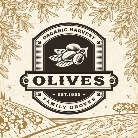 Retro olives label on harvest landscape Иллюстрация