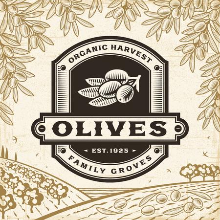 Retro olives label on harvest landscape Ilustrace
