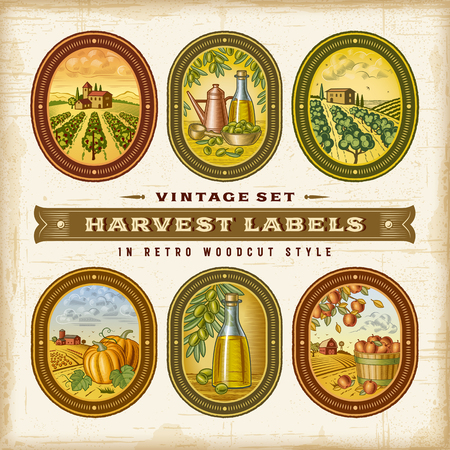 Vintage Colorful Harvest Labels Set