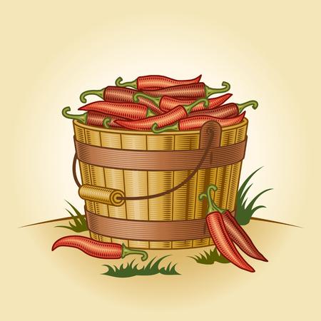 唐辛子のレトロなバケツ  イラスト・ベクター素材
