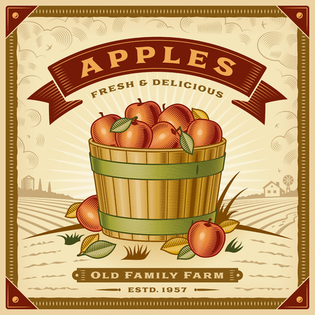 Retro apple harvest label vector illustration