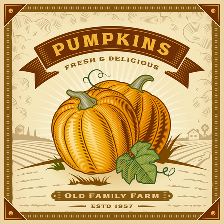 Retro pumpkin harvest label vector illustration