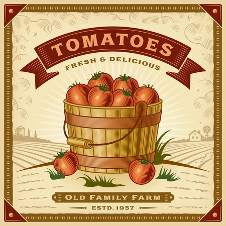 Retro tomato harvest label with landscape Çizim