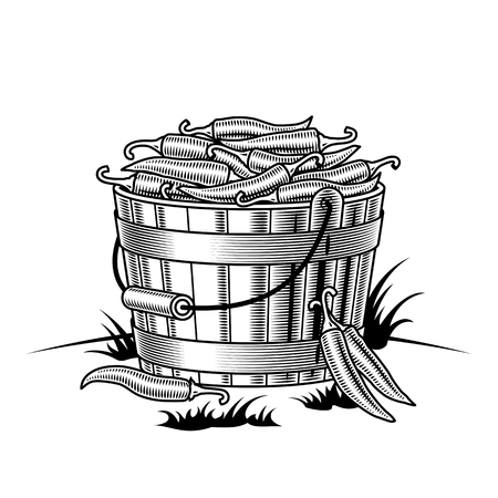 Retro bucket of chili peppers black and white Illustration