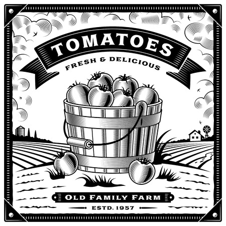 Retro tomato harvest label with landscape black and white