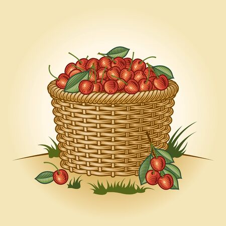 Retro basket of cherries