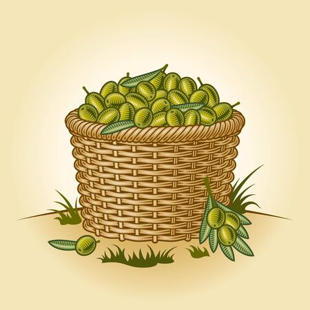 Retro basket of olives