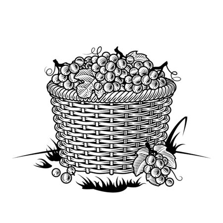 Retro basket of grapes black and white