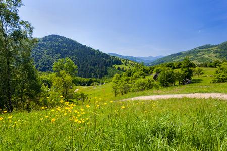 Meadows near the village in the Carpathian mountains
