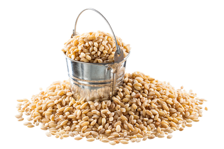 Pearl barley in a bucket on a white background Stock Photo