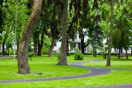 Sentiers sinueux dans le parc, parc printanier
