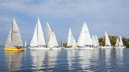 Many sailing yachts on the water, regatta