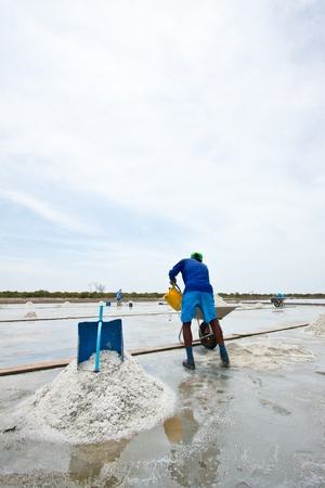 Work in salt pan Stock Photo - 14565048
