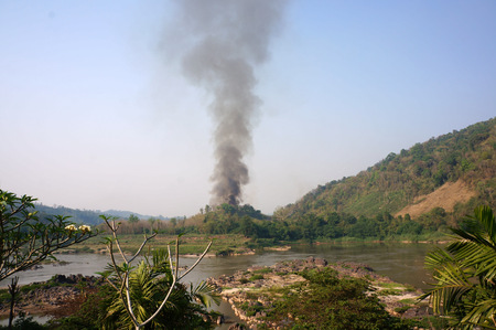 wild fire: Wild fire Stock Photo