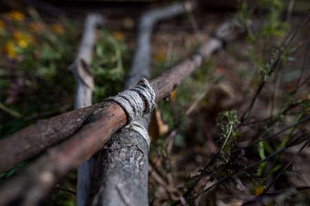 버지니아의 블루 릿지 파크 웨이 (Blue Ridge Parkway)에 정원으로 나무 기둥을 쓰러 뜨 렸습니다. 스톡 콘텐츠
