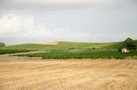 ag: Landscape in Sicily, Menfi (Ag) Stock Photo