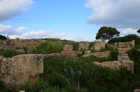 Archaeological Park of Selinunte, Sicily Italy