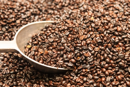 put coffee beans photo