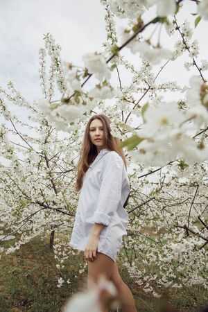 Girl walk in the flower garden. Young woman in a cherry orchard in spring. Photo of a girl between flowering trees. In Poland. Stock fotó